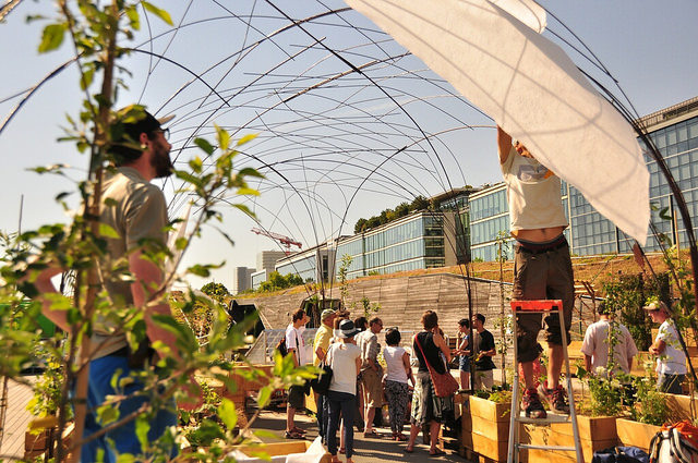 Vergers Urbains Living Roof