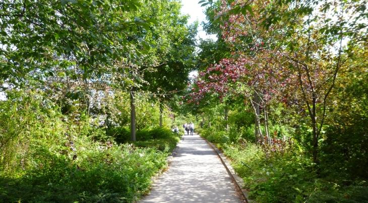 Budget participatif paris nature en ville