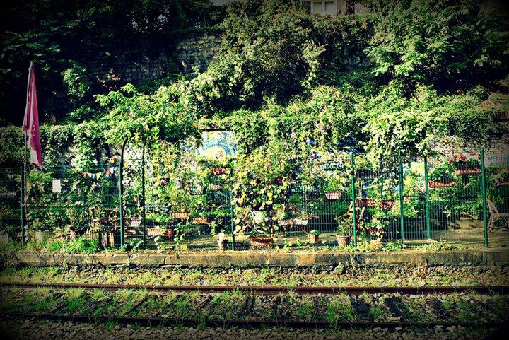 les jardins du ruisseau